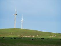Wiktoriański wiatrowy gospodarstwo rolne zdjęcia stock