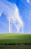 Wiktoriański wiatrowy gospodarstwo rolne obrazy stock