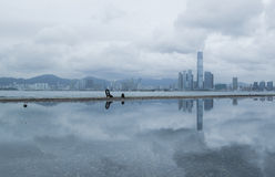 Wiktoria Kowloon i schronienia linia horyzontu od West Point, Hong Kong Obraz Stock