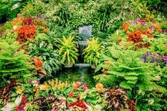 Wiktoria ` s ogródy botaniczni zdjęcia stock