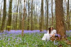 Wiktoriańska kobieta w bluebells lasowych Obraz Royalty Free