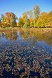 Wilanow宫殿-池塘在公园 免版税库存图片