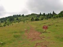 Wilburn Ridge em Grayson Highlands State Park foto de stock