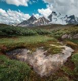 Wilcox przepustka przegapia Kolumbia Icefields fotografia royalty free