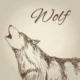 Wilczy projekt Zwierzęcy pojęcie Przyrody zwierzę, wektorowa ilustracja royalty ilustracja
