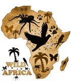 Wild Africa Royalty Free Stock Photos