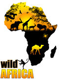 Wild Africa poster. Background,  illustration Royalty Free Stock Image
