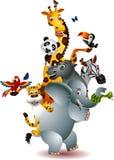 Wild African animal cartoon Stock Images