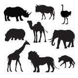 Wild African Animals Black. Silhouettes set with buffalo hippopotamus giraffe isolated vector illustration Royalty Free Stock Images