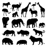 Wild african animals silhouettes set. Zoo vector illustrations isolate. Animal safari black silhouette rhinoceros and monkey, goat and giraffe Stock Photos