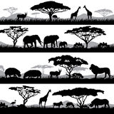 Wild african life. Background silhouettes of different animals and trees Stock Photo