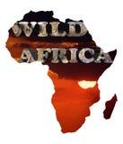 Wild Afrika Royalty-vrije Stock Afbeeldingen