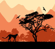 wild afrikanska djur Arkivfoto