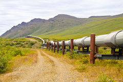 Wild Alaska pipeline. A view of the Alaskan oil pipeline in the wilderness of the tundra stock image