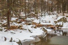 Lac du Pellaud Royalty Free Stock Image