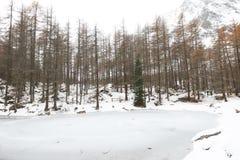 Lac du Pellaud Stock Photo