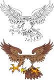 Wild american eagle royalty free illustration