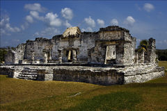 A wild angle of the tulum   mexico america Royalty Free Stock Photos