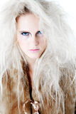 Wild angry fierce look in fur at you Stock Images
