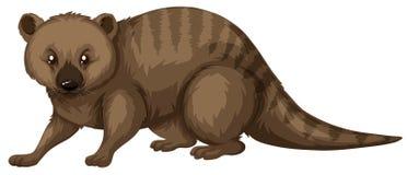 Wild animal with brown fur. Illustration Stock Photos