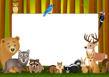 Wild animal cartoon Stock Image