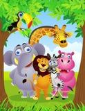 Wild animal cartoon Stock Photography
