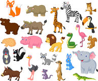 Wild animal cartoon collection Royalty Free Stock Photos