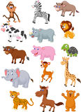 Wild animal cartoon collection Stock Photo