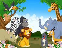 Wild Animal cartoon Royalty Free Stock Images