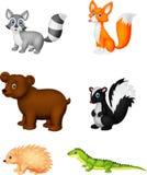 Wild animal cartoon Stock Image