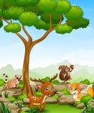 Wild animal cartoon in the jungle Royalty Free Stock Photo