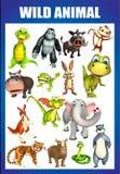 Wild animal chart Stock Photos
