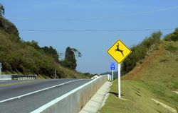 Wild animal crossing warning sign in road Royalty Free Stock Image