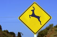 Wild animal crossing warning sign in road Stock Photography