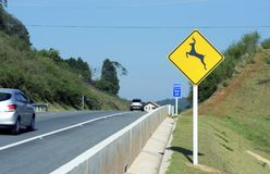 Wild animal crossing warning sign in road Royalty Free Stock Photo