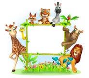 Wild animal Stock Photos