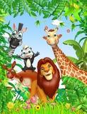 Wild animal Royalty Free Stock Images