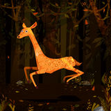 Wild animal Deer in jungle forest background Royalty Free Stock Image