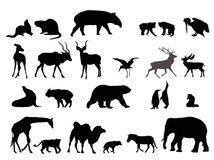 Wild animal detailed silhouettes Stock Photography