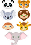 Wild Animal Faces Stock Images