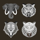 Wild animal faces Stock Image