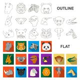 Wild animal flat icons in set collection for design. Mammal and bird vector symbol stock web illustration. Wild animal flat icons in set collection for design stock illustration
