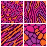 Wild Animal Fur Patterns Royalty Free Stock Photos