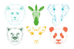 Wild animal heads. Stock Photo