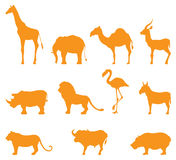 Wild Animal Icons Royalty Free Stock Photo