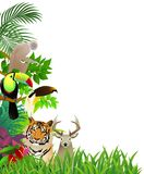 Wild animal in the jungle background Royalty Free Stock Photo