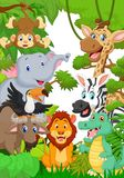 Wild animal in the jungle Stock Images
