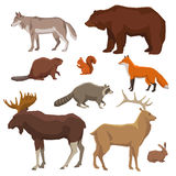 Wild Animal Painted Icon Set Royalty Free Stock Photography