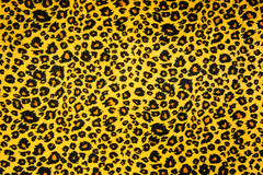 Wild animal pattern background or texture Stock Images