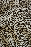 Wild animal pattern background or texture Stock Photos